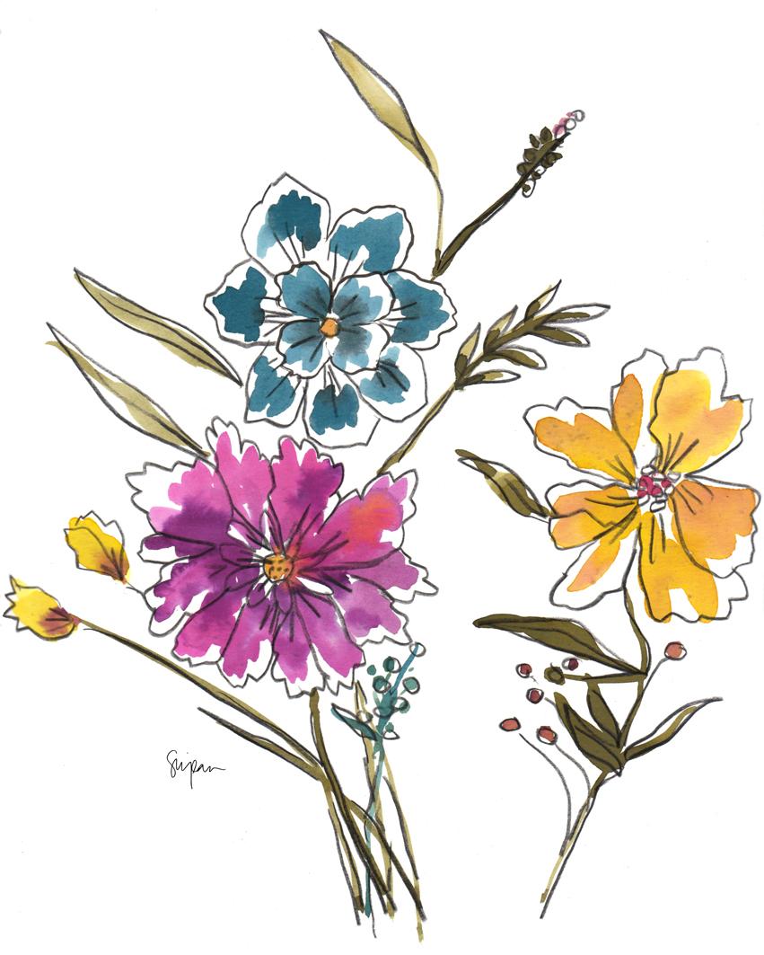 sbotanicals
